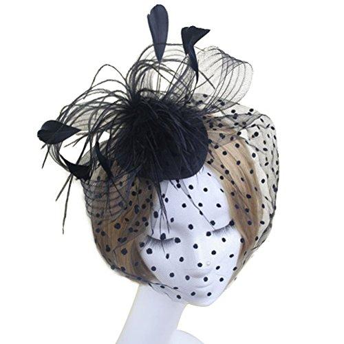 DRESHOW Fascinators Hut Cocktail Party Tee Kopfbedeckung Blume Mesh Organza B/änder Federn auf Einem Stirnband und Gabel Clip f/ür M/ädchen und Damen